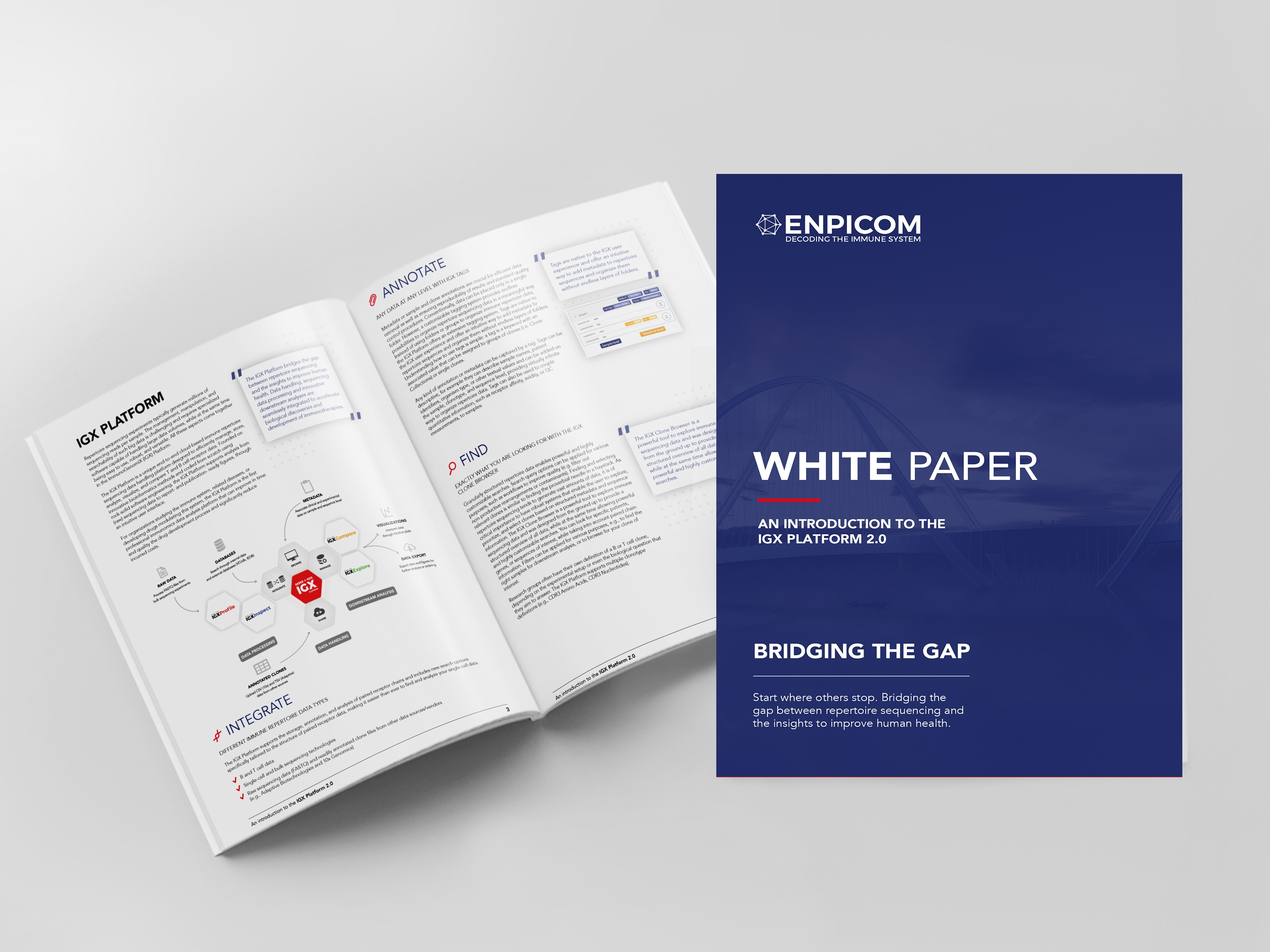 Whitepaper Introduction to IGX 2.1